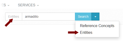 Two Search Option